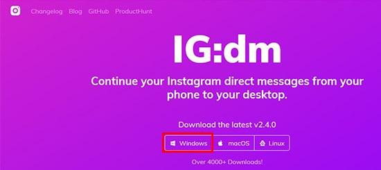 Download IG:DM