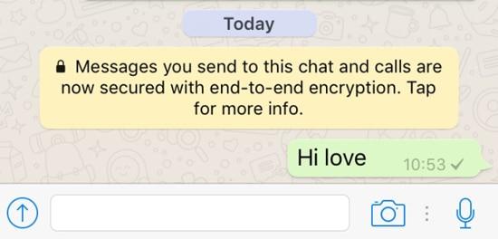 Chat WhatsApp Belum Terkirim