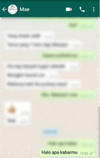 Hasil Pesan WhatsApp