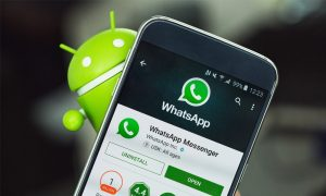 whatsapp gif porno 300x180 - WhatsApp hadirkan GIF porno, Whatsapp gif porno, gir porno, featured - Heboh Konten GIF Porno di WhatsApp, Kominfo Geram!