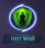Ironn Wall