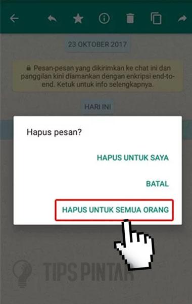 Cara Melihat Pesan WhatsApp yang Sudah Dihapus