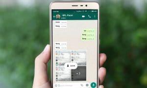 Cara Sembunyikan Online di WhatsApp Padahal Sedang Online