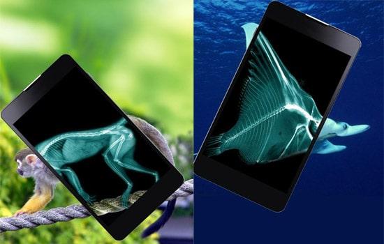Aplikasi Xray Scanner Animals