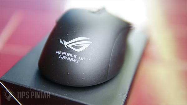 Mouse ROG