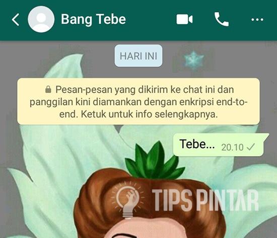 Pesan WhatsApp Ceklis 1