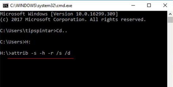 Cara Mengembalikan File yang Terhapus di Memory Card Karena Virus 10