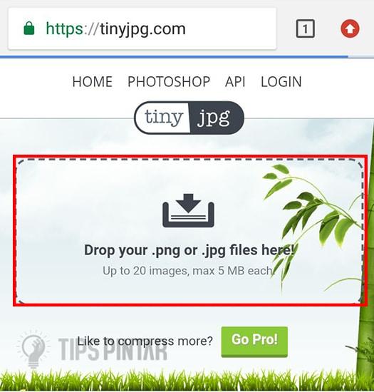 Buka Situs TinyJPG