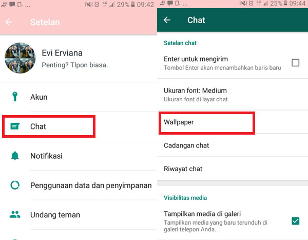 cara-mengganti-tema-whatsapp-menjadi-tema-panda