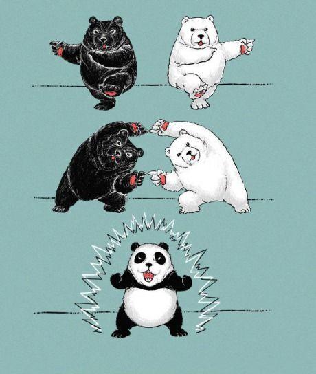 Sports Panda