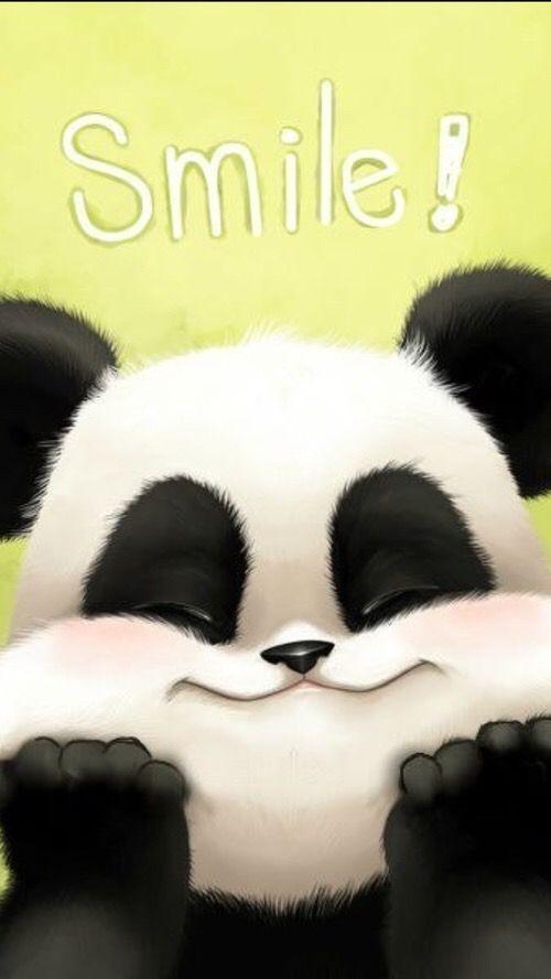 Chubby Cheeks Panda