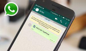 Cuma 5 Menit! Begini Cara Kirim Aplikasi Lewat WhatsApp di Android 4