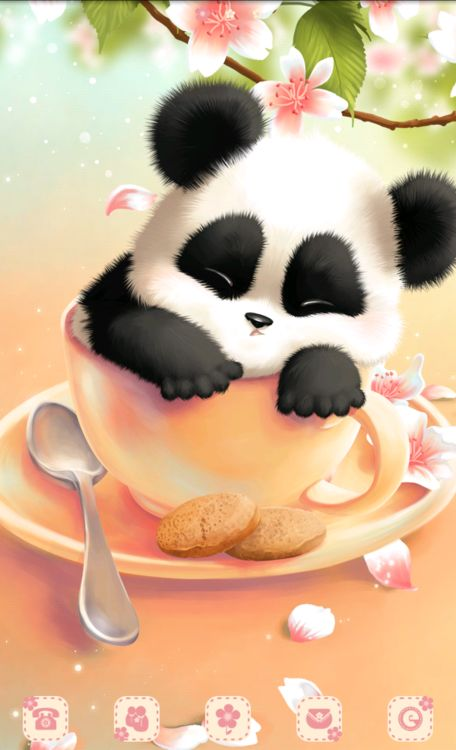 Panda In The Cup