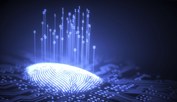 Sensor Ultrasonic Fingerprint