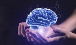 Hal yang Bisa Merusak Kesehatan Otak
