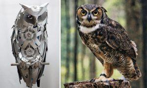 Binatang yang Jadi Inspirasi untuk Teknologi Canggih