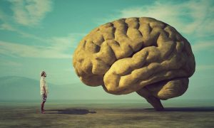 Mitos Tentang Otak Manusia