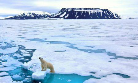 Perbedaan Antara Kutub Utara dan Selatan