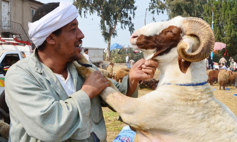 Tradisi Paling Unik Saat Hari Raya Idul Adha