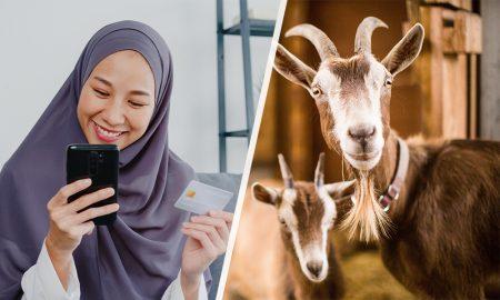 Tips Membeli Hewan Qurban Secara Online